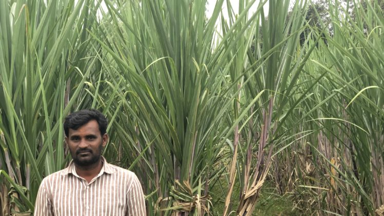 Village relies on farmer's bore-well for water supply
